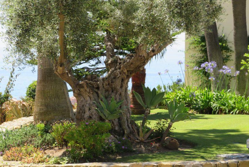 villa-to-buy-duquesa-golf-manilva-spectacular-sea-views-south-orientation-corner-terrace-front-garden