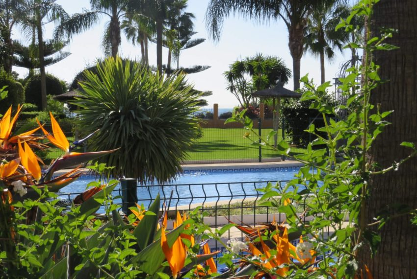 3bedrooms-apartment-buy-sea-views-very-first-line-beach-walking-distance-Estepona-port-pool-plants